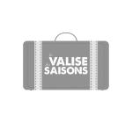 valise-grey